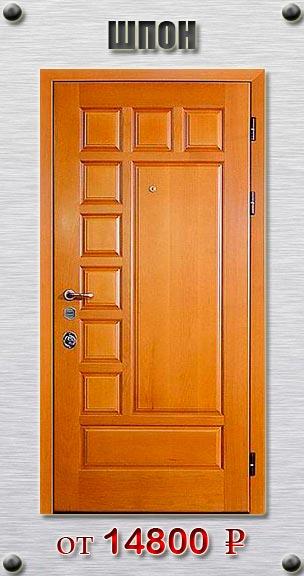 металлическая дверь со шпоном в волоколамске
